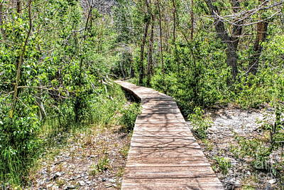 Photograph - Boardwalk At Convict Lake by Joe Lach