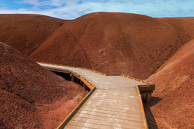 John Day Photograph - Boardwalk At Painted Cove Hiking Loop by David Gn