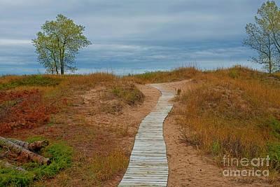 Photograph - Boardwalk by David Arment