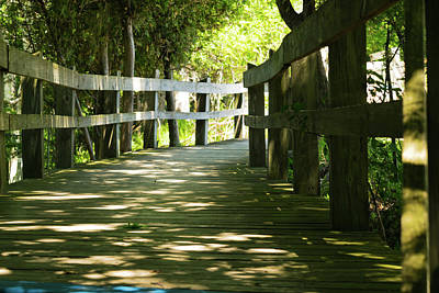 Photograph - Boardwalk by Lester Plank