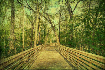 Photograph - Boardwalk by Lewis Mann