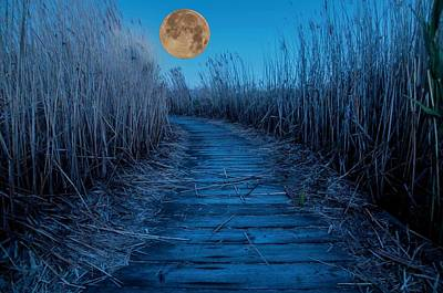 Photograph - Boardwalk Moon by Norman Hall