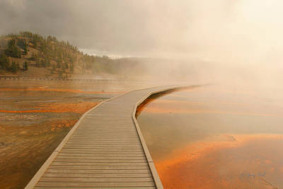 Photograph - Boardwalk Of Life by Gerry Sibell