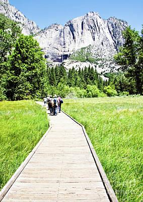 Boardwalk On Yosemite Meadow Art Print
