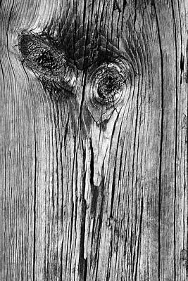 Photograph - Boardwalk Ostrich Bw by Mary Bedy