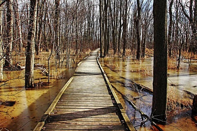 Photograph - Boardwalk Over Golden Brown Iced Pond by Debbie Oppermann