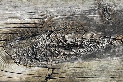 Photograph - Boardwalk Patterns 10 by Mary Bedy