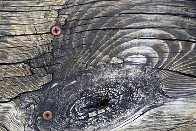 Photograph - Boardwalk Patterns 3 by Mary Bedy