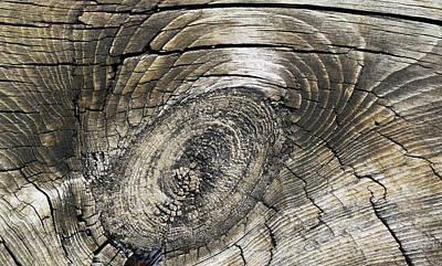 Photograph - Boardwalk Patterns 4 by Mary Bedy