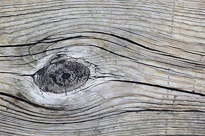 Photograph - Boardwalk Patterns 5 by Mary Bedy
