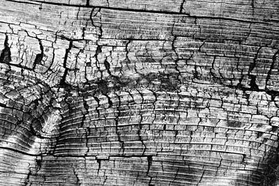 Photograph - Boardwalk Patterns 9 Bw by Mary Bedy