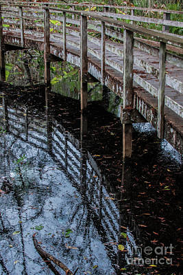 Photograph - Boardwalk Reflection by John Greco