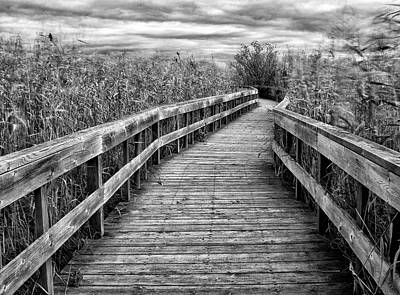 Photograph - Boardwalk by Tasty Mountain Goodness
