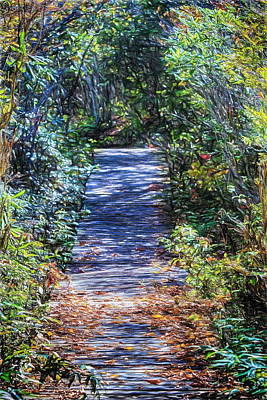 Digital Art - Boardwalk Through The Brambles by John Haldane