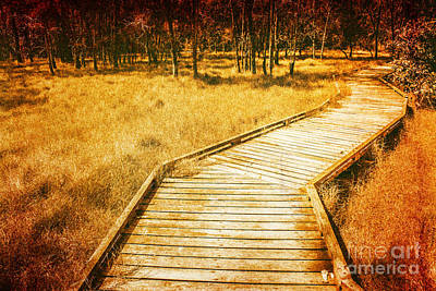 Boardwalk Through Vintage Wetlands Art Print