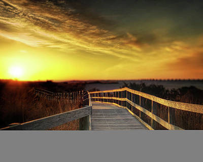 Photograph - Boardwalk To Fire Island by Vicki Jauron