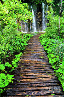 Photograph - Boardwalk To The Waterfalls, Plitvice Lakes National Park, Croatia by Global Light Photography - Nicole Leffer