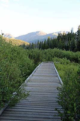 Photograph - Boardwalk To The Wetlands by Pamela Critchlow