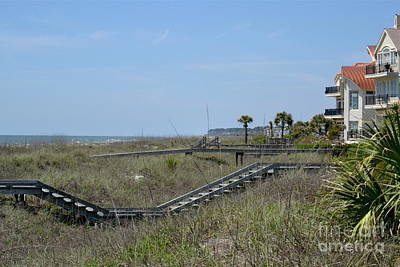Art Print featuring the photograph Boardwalks And Sand Dunes by Carol  Bradley