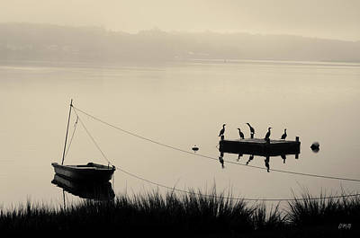 Photograph - Boat And Cormorants - Taunton River by David Gordon