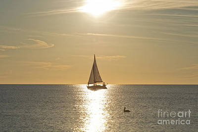 Photograph - Boat At Sundown by David Arment