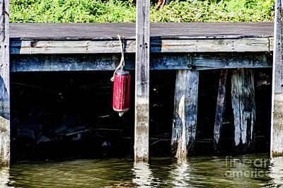 Photograph - Boat Bumper by William Norton