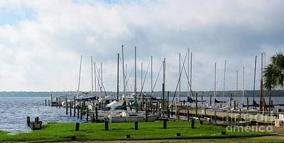 Photograph - Boat Dock On The St. John's River by Tim Townsend