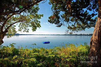 Photograph - Boat Framed By Trees And Foliage by David Arment