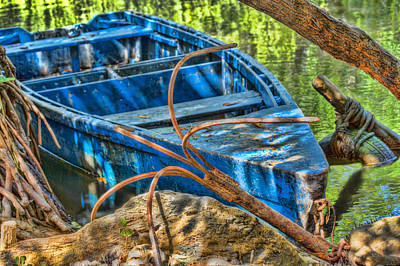 Photograph - Boat In The Bush by Nadia Sanowar