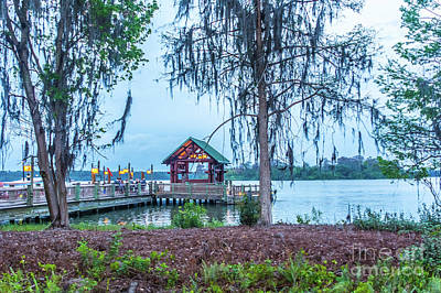 Photograph - Boat Landing by Pamela Williams