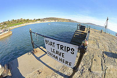 Photograph - Boat Trips by Andy Thompson