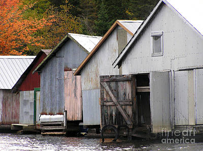 Photograph - Boathouses by Li Newton