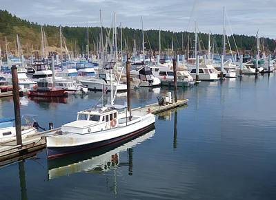 Photograph - Boats At Friday Harbor by Dan Sproul