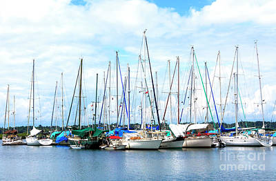 Photograph - Boats At Isla Bastimentos Panama by John Rizzuto