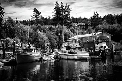 Boats At Lovric's Sea Craft, Washington Art Print by TL Mair
