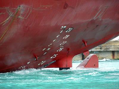 Photograph - Boats Bum by Cyryn Fyrcyd