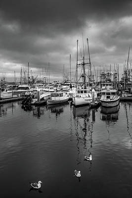 Photograph - Boats by Constance Reid