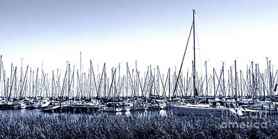 Photograph - Boats Harbour Enkhuizen Holland by Lexa Harpell