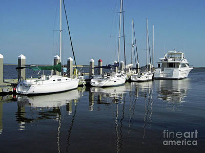 Nature Photograph - Boats In A Row by D Hackett