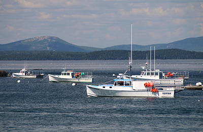 Photograph - Boats In Bar Harbor by Living Color Photography Lorraine Lynch