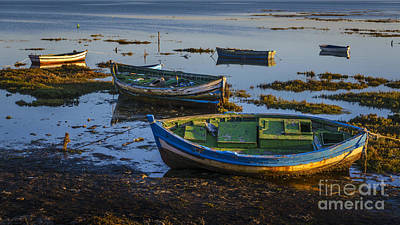 Photograph - Boats In Puerto Real Cadiz Spain by Pablo Avanzini