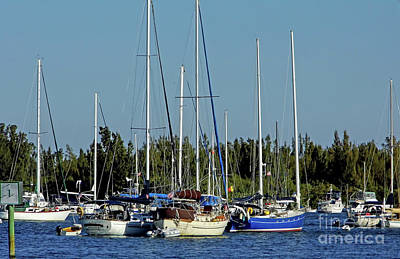 Photograph - Boats In The Indian River Lagoon by D Hackett