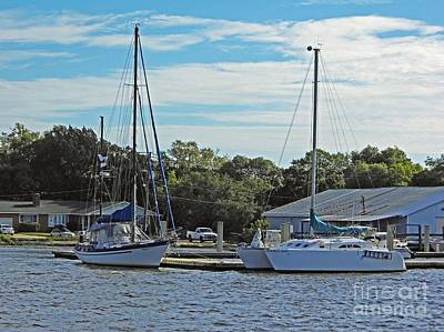 Photograph - Boats Of St Marys by D Hackett