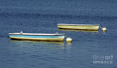 Photograph - Boats On Lake Sumter by D Hackett