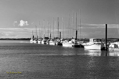 Boats On The Estuary Art Print