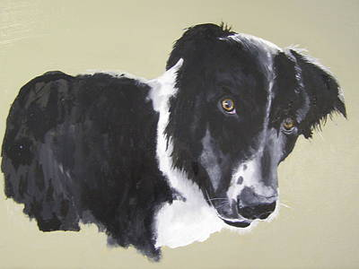 Painting - Bob The Border Collie by Eric Burgess-Ray