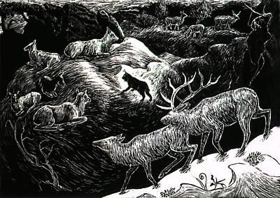 Bobcat Among Elk Art Print by Dawn Senior-Trask