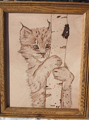 Pyrography Pyrography - Bobcat Kitten Curiosity by Angel Abbs-Portice