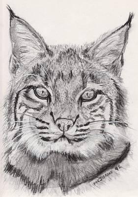 Bobcat Print by Marqueta Graham