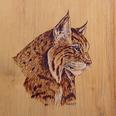 Pyrography - Bobcat Pillow/bag by Ron Haist